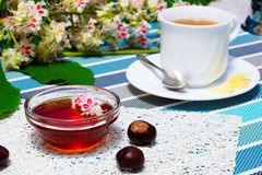 Honey, cup of tea, and fruits of chestnut. Glass bowl with chestnut honey and a cup of tea.on the background of blossoming chestnut branches Stock Photography