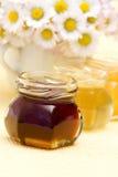 Honey and daisies Stock Image