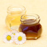 Honey and daisies Royalty Free Stock Photography