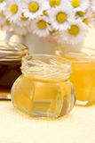 Honey and daisies Royalty Free Stock Image