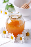 Honey and daisies Royalty Free Stock Photos