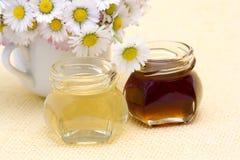 Honey and daisies Royalty Free Stock Photos