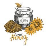 Honey. Design elements set. Detailed engraved. Vintage hand drawn vector illustration realistic sketch Stock Photo