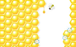 Honey Design Vector Illustration. Honeycombs, Honey Drop, Flowers and Bee, vector illustration Stock Photo