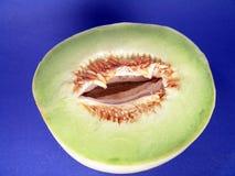 Honey Dew Melon 3. Honey dew melon close up stock photo