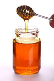 Honey dipper Stock Image
