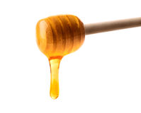Honey dipper. Fresh honey dripping off wooden dipper, isolated on white background royalty free stock photography