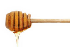 Honey Dipper Dripping Honey. A wood honey dipper dripping honey isolated on white background royalty free stock photos