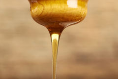Honey on a dipper. Royalty Free Stock Photography