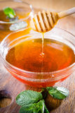 Honey dipper. Full honey pot and honey stick Royalty Free Stock Images
