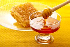 Honey dipper with honey Stock Photos