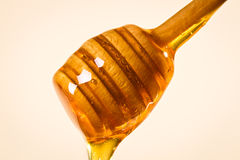 Honey dipper with honey Royalty Free Stock Photography