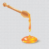Honey dipper honey drops. Honey dipper. Bee Honey dripping from wooden honey dipper on transparent background. Honey dripped, drops, splash, for advertising Royalty Free Stock Images