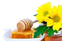 Honey dipper and honeycomb Royalty Free Stock Photos