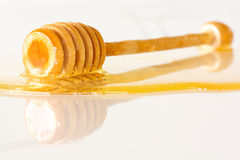 Honey dipper immersed into honey Stock Photography