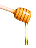 Honey dipper isolated on white Royalty Free Stock Photos