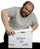 Honey Do List. Trying to close the box Stock Photography