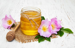 Honey and dog rose flowers stock photos