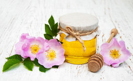 Honey and dog rose flowers stock photography