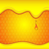 Honey drip on honey comb background Royalty Free Stock Photo