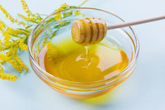 Honey drip from a wooden honey dipper in glass bowl on a blue background Stock Photos