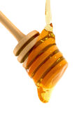 Honey Dripper Royalty Free Stock Images