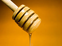 Honey Dripper Sweet Food Spreader Bee Sweet Food Royalty Free Stock Photo