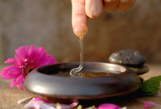 Honey dripping. Diffrent spa ingredient, honey and flowers Royalty Free Stock Photos