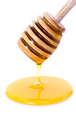 Honey dripping from dipper Stock Photography