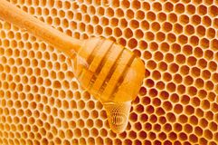 Honey dripping from dipper on background honeycomb. Honey dripping from dipper on a background honeycomb royalty free stock image