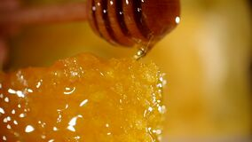 Honey dripping from honey dipper on honeycomb, over yellow background. Thick organic honey dipping from the wooden honey. Spoon stock footage