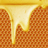 Honey dripping on honeycomb background Royalty Free Stock Image