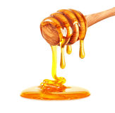 Honey dripping Stock Images