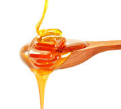 Honey  dripping Stock Photos