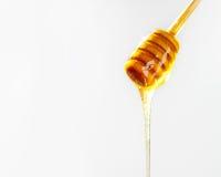 Honey Dripping van Dipper met Exemplaarruimte stock foto