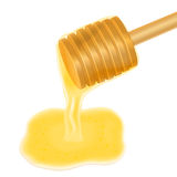 Honey dripping from wooden honey dipper. Vector illustration  on white Royalty Free Stock Images