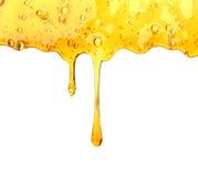 Honey drips. Seamless  Royalty Free Stock Photos