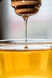 Honey Drizzling From Dipper Back into Bowl Royalty Free Stock Photography