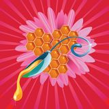 Honey drop flows down from spoon with flower Royalty Free Stock Photos