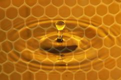 Honey Drop. Single drop of pure honey onto a gold pond showing the empty wax cells ready to be filled in the background surrounded be circular waves royalty free stock photography