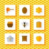 Honey elements set Royalty Free Stock Photos