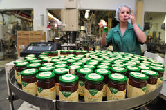 Honey Factory - Production line Stock Photography