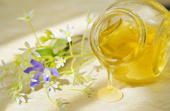 Honey flow and flowers Stock Images