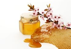 Honey and flower. Healthy delicious bee honey and flower Royalty Free Stock Photos