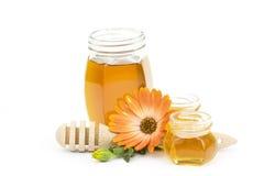 Honey and flower Stock Photo