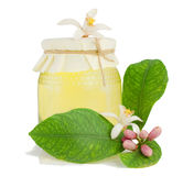 Honey, flower and lemon branch. 