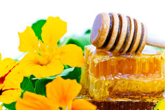 Honey and flowers Stock Photography