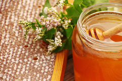 Honey with flowers and honeycombs Stock Photos