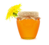 Honey from flowers Stock Photos