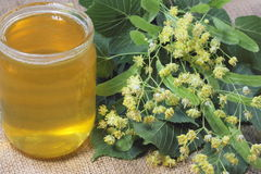 Honey from the flowers of linden Royalty Free Stock Photography